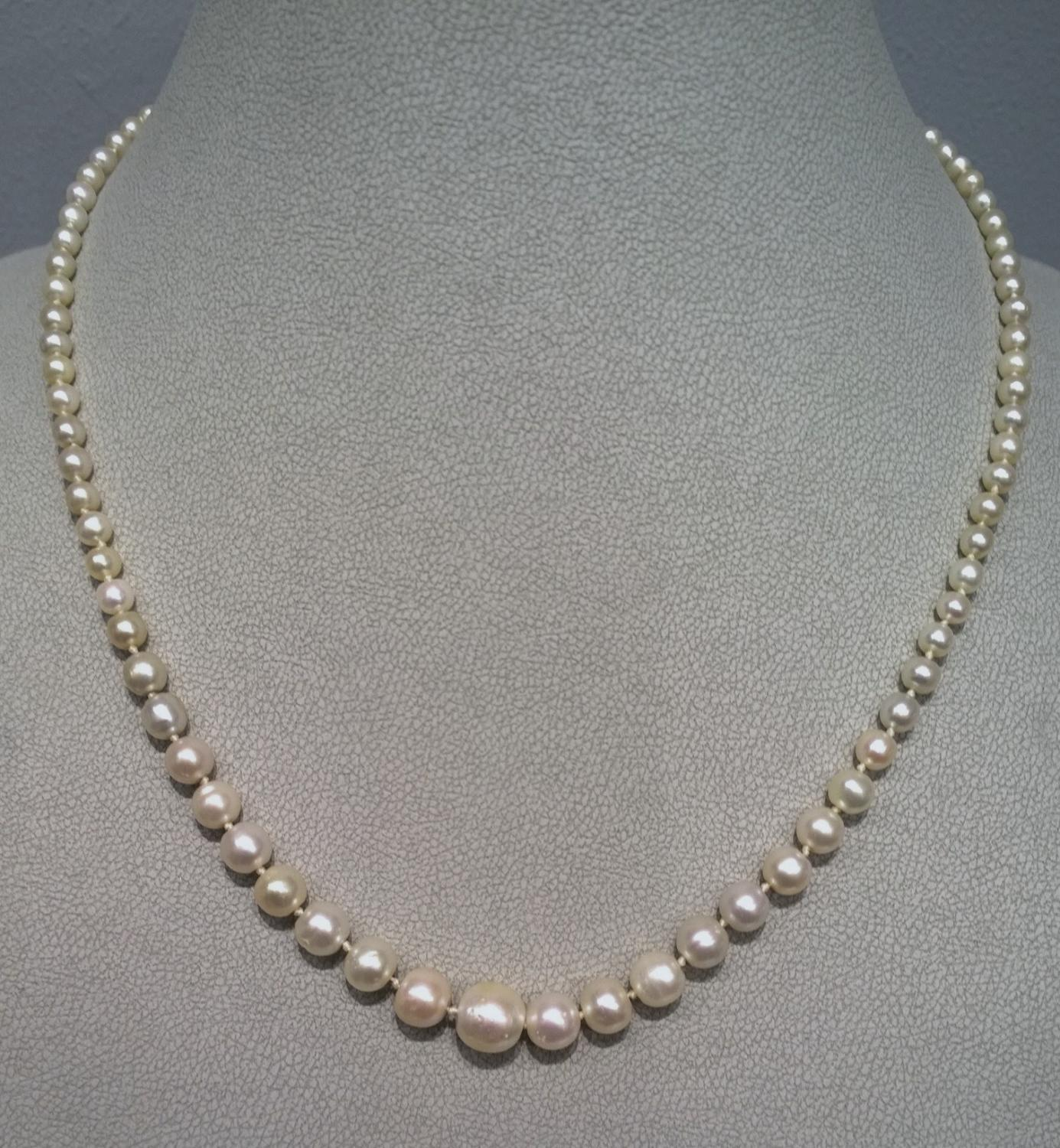 natural pearl necklace in antique and vintage jewellery. Black Bedroom Furniture Sets. Home Design Ideas